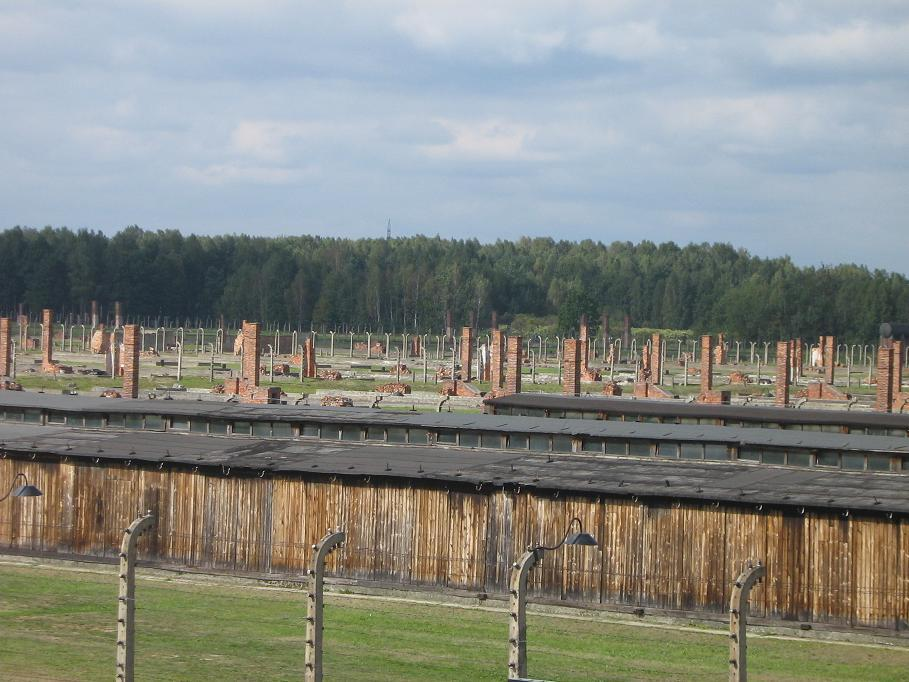 Auschwitz Birkenau & Salt Mine Tour